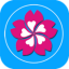 樱花直播 V1.0 安卓版