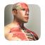 放置人类 V1.5.1 破解版
