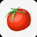 西红柿小说 v1.1 安卓版