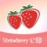 草莓公园 v1.0 安卓版